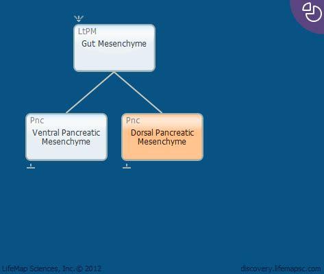Risk of cancer in autoimmune pancreatitis: A case - control